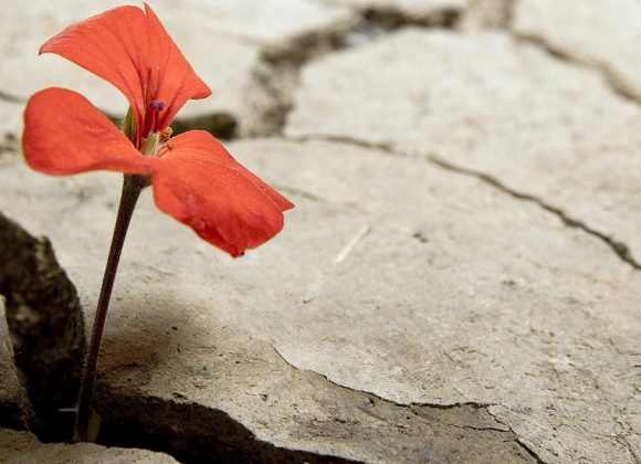 Beauty In The Brokenness – Part 1