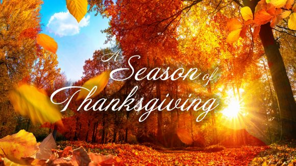 Autumn Forest - A Season of Thanksgiving